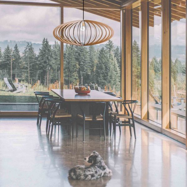 The Pinot pendant light over dining room table with large glass windows